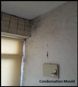 condensation mould 2